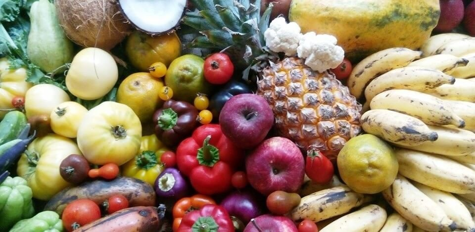 Meet indias raw vegans who eat nothing but fruits and uncooked veggies picture credit httpindianrawveganfoundation forumfinder Image collections