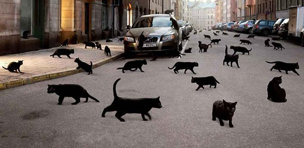 """truth behind superstitions A superstition can be an outlook, performing certain things read more  """"i am  the way, the truth, and the life: no man comes to the father, but by me"""" truth can ."""