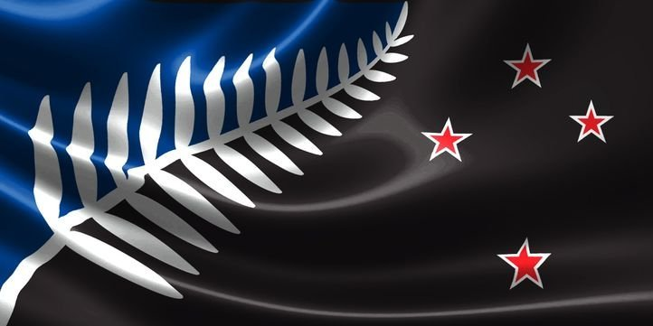 The winning design features a silver fern and red stars on a black and blue  background  The new design will now go head to head against the current  flag in. Black  Blue And A Fern  New Zealand Might Get A Stunning New Flag