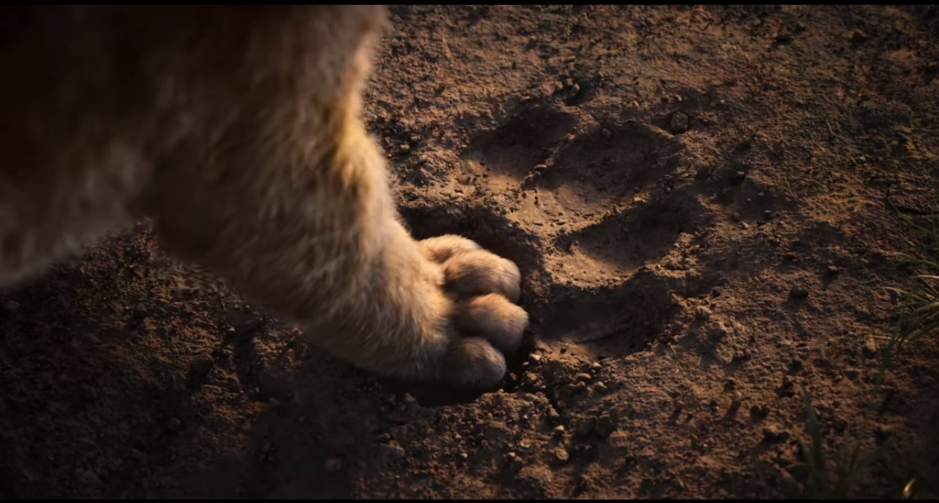Disney S Trailer For The Lion King 2019 Has Transported