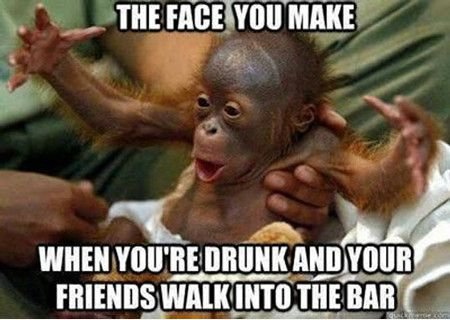 413220086 17 hilarious memes that are perfect for people who love to drink