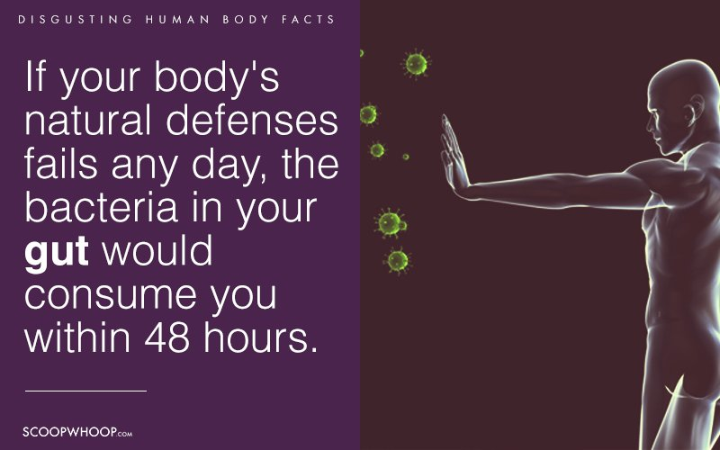 12 Weird Disgusting Facts About Humans That Will Totally Change
