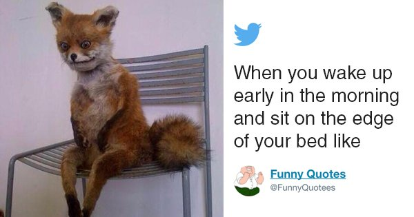 Tweets That Perfectly Capture The Struggle Of Waking Up In The Morning