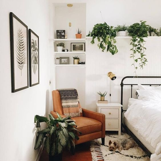 If you ve got a thing for gardening then adding some plants to your room  would make it look fresh and feel fresh. 10 Simple Things You Can Do To Give Your Room The Ultimate Makeover