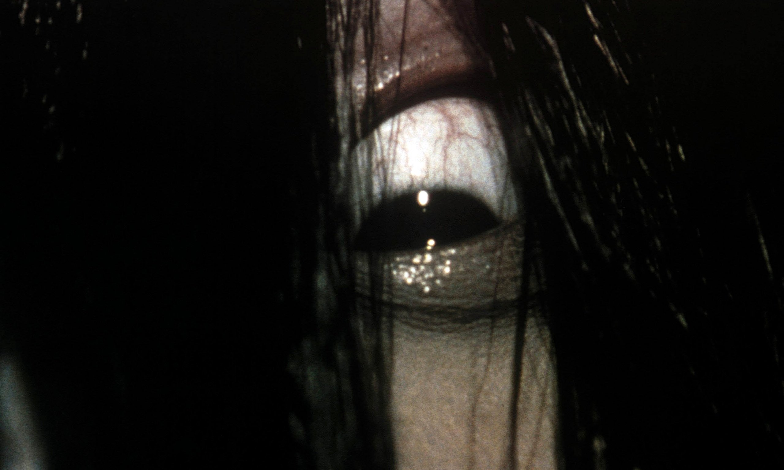 Sleep With Your Lights On Because These Japanese Horror Movies Will Leave You Scared Shitless