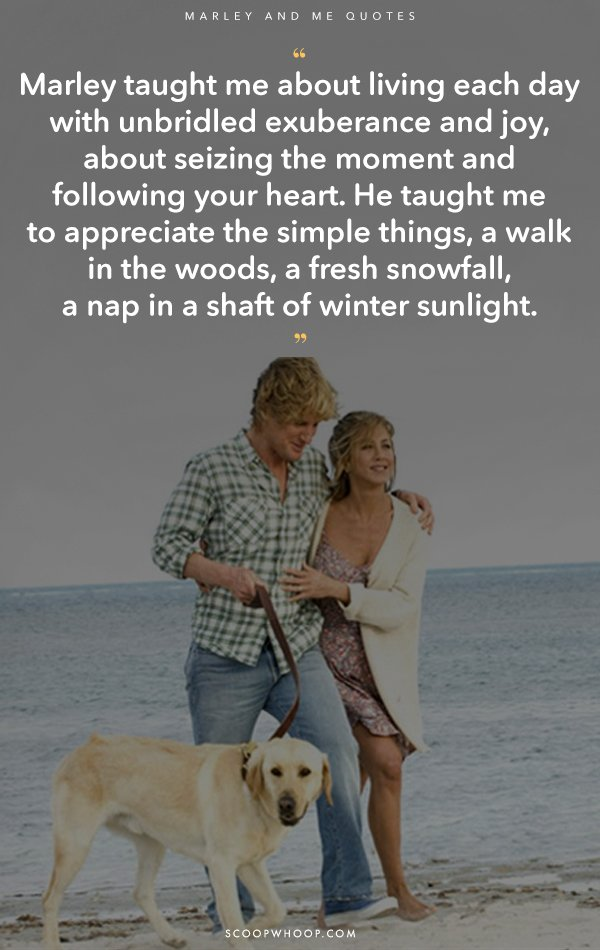 These Quotes From 'Marley & Me' Are An Ode To That Pawfect ...  These Quotes Fr...