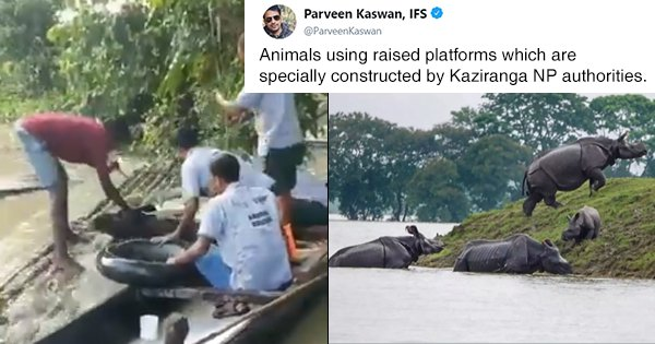 Amidst The Devastating Assam Floods, State Forest Officials Rescuing Animals Are The Unsung Heroes
