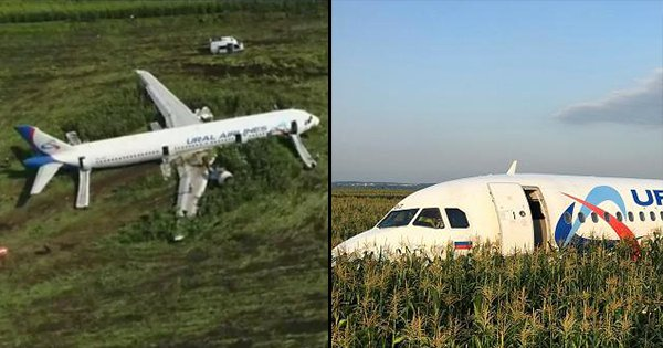 Pilots Prevent Plane Crash By Landing It In Cornfield, All 226 Passengers Safe