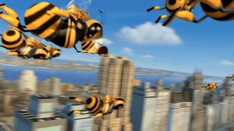 Gif from the bee movie