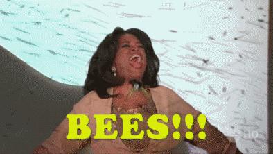 gif of bees
