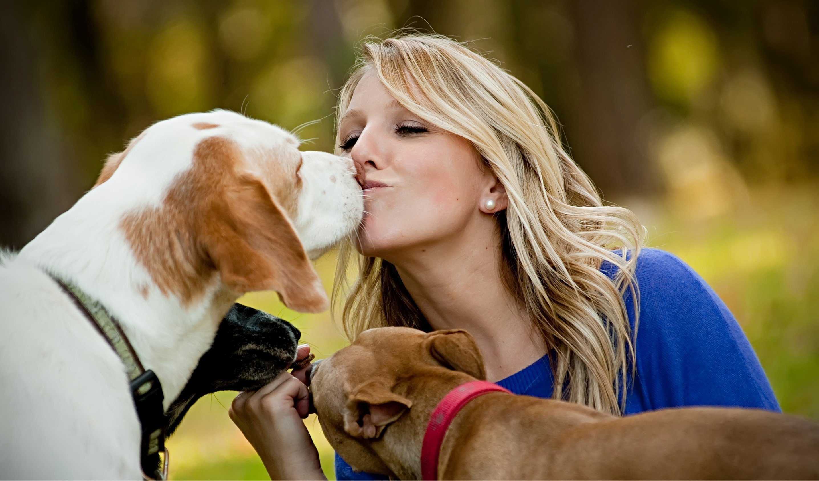 Dating site for dog lovers usa for free