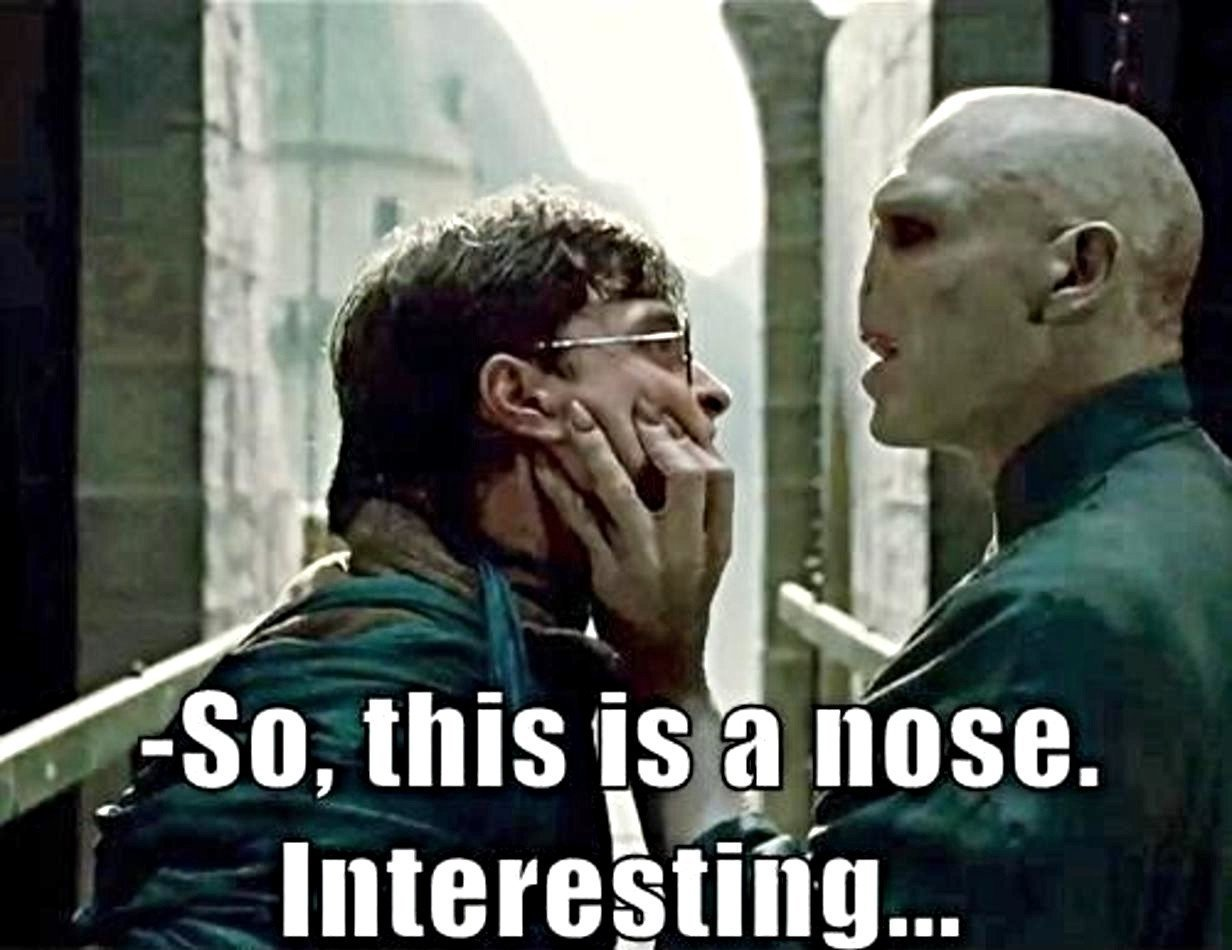 Funny Harry Potter Memes Voldemort : Harry potter jokes that are so bad they re good