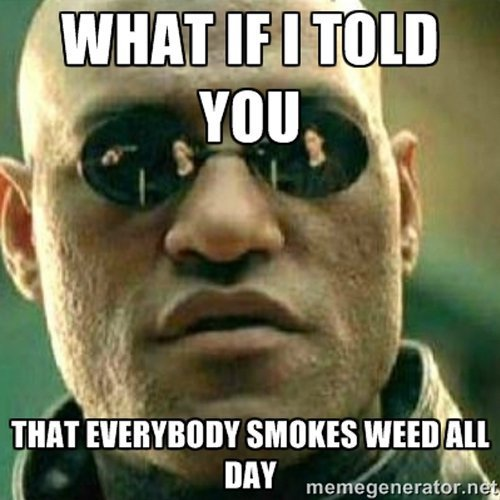 9242013120000214550769weed9real