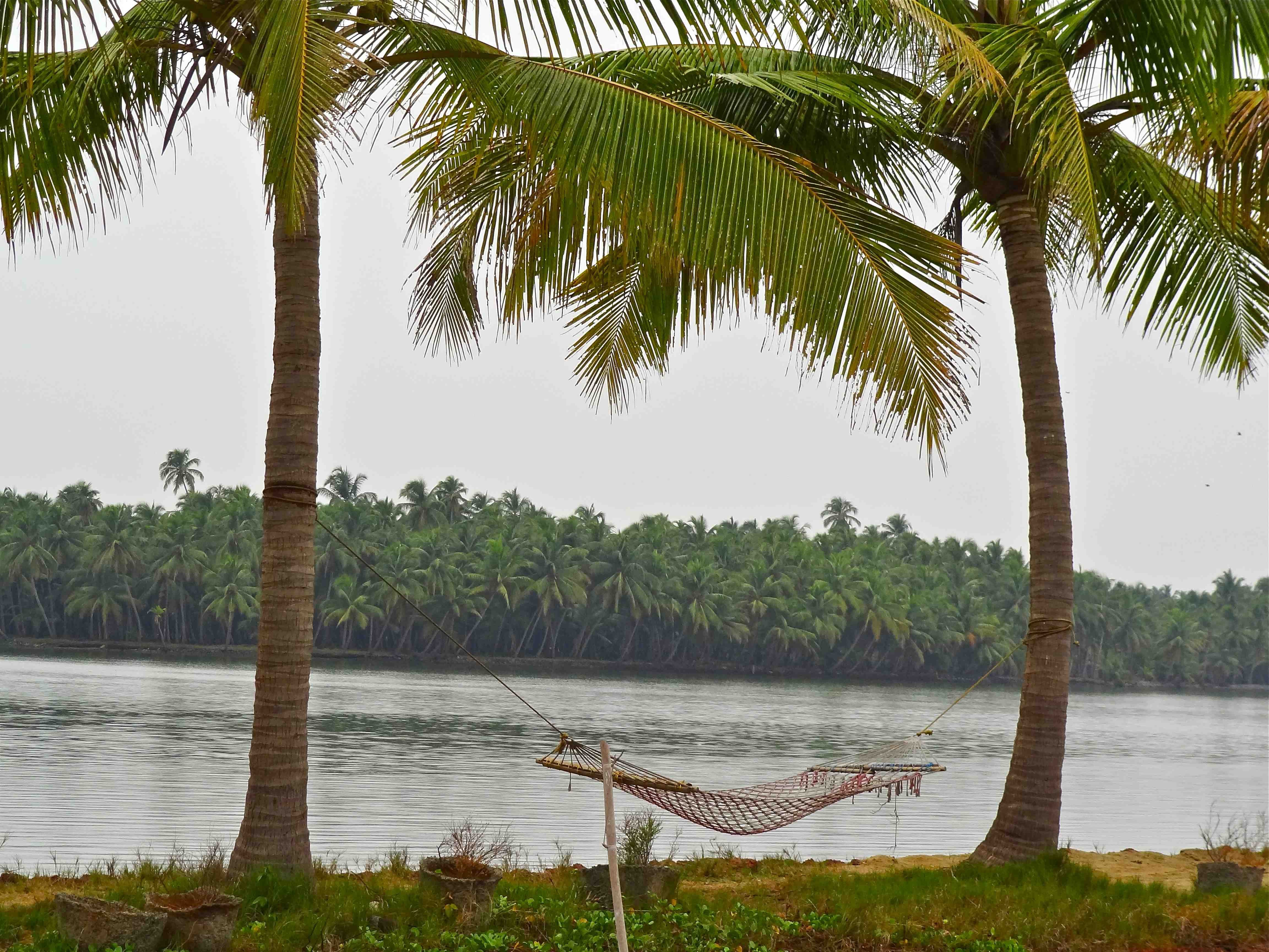 a trip to kerala essay During my recent holidays in kumarakom, i enjoyed a house boat trip with kerala houseboat retreat read this review to learn how we enjoyed the day trip in a.